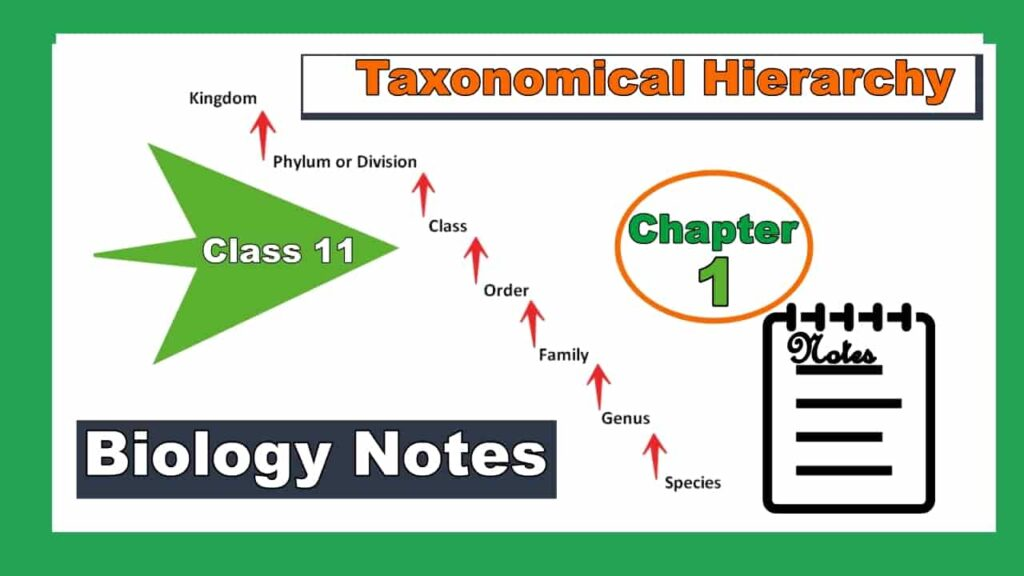 Taxonomy Hierarchy And Systematics Class 11 Notes Biology Chapter 1 image