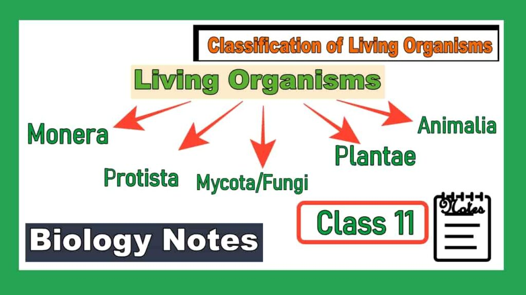 Classification of Living Organisms Class 11 Notes image